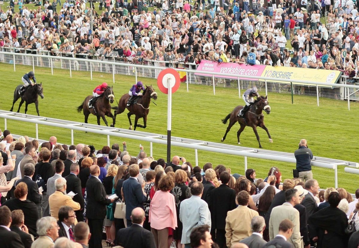 Things to do in North Yorkshire - York Races