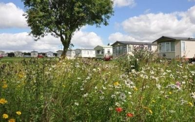 Things we love about Old Hall Holiday Park