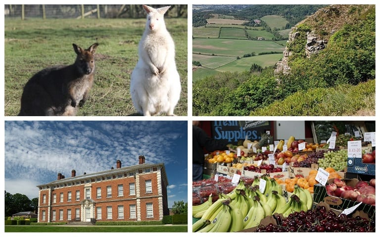 Discover Hambleton – an overlooked gem!